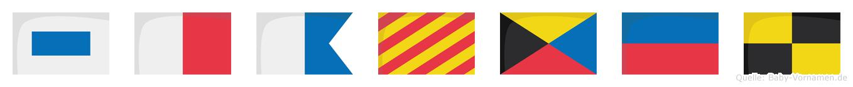 Shayzel im Flaggenalphabet
