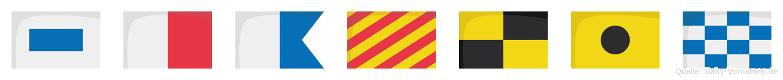 Shaylin im Flaggenalphabet
