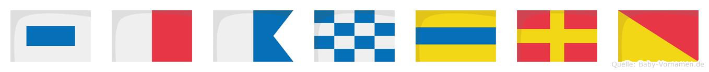 Shandro im Flaggenalphabet