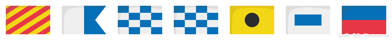 Yannise im Flaggenalphabet