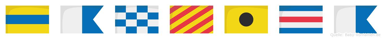Danyica im Flaggenalphabet