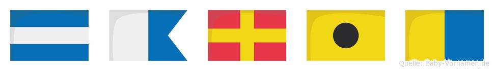 Jarik im Flaggenalphabet