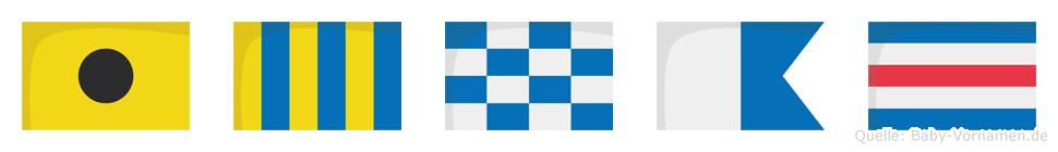 Ignac im Flaggenalphabet