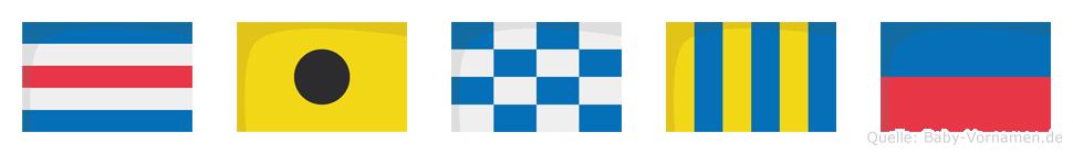 Cinge im Flaggenalphabet