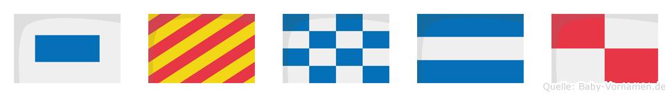 Synju im Flaggenalphabet