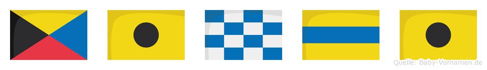 Zindi im Flaggenalphabet