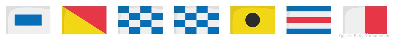 Sonnich im Flaggenalphabet