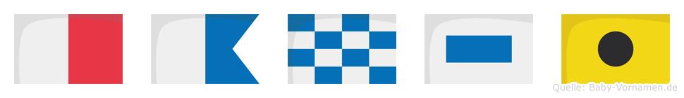 Hansi im Flaggenalphabet
