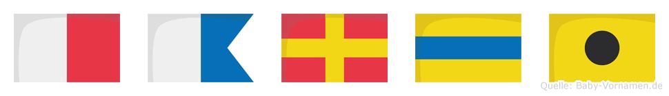 Hardi im Flaggenalphabet