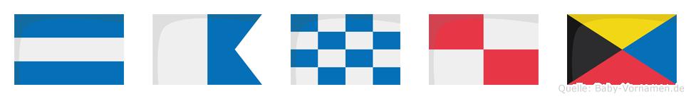 Januz im Flaggenalphabet