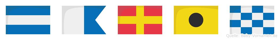 Jarin im Flaggenalphabet