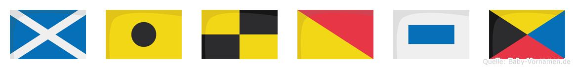 Milosz im Flaggenalphabet