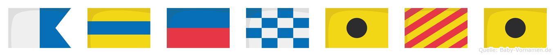 Adeniyi im Flaggenalphabet