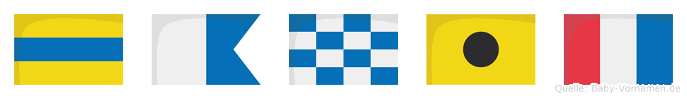 Danit im Flaggenalphabet