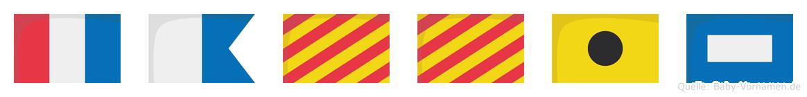 Tayyip im Flaggenalphabet