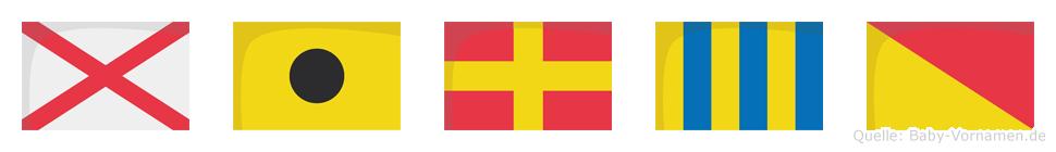 Virgo im Flaggenalphabet