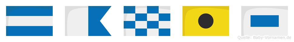 Janis im Flaggenalphabet