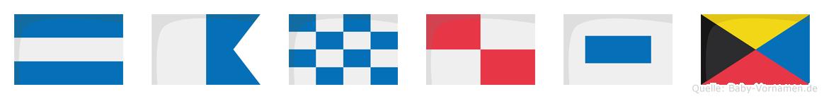 Janusz im Flaggenalphabet