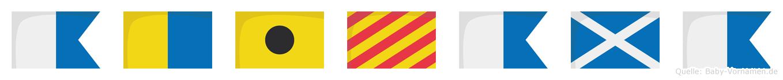 Akiyama im Flaggenalphabet