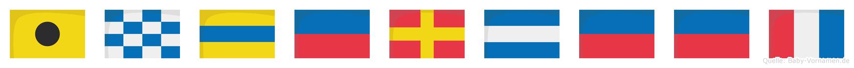 Inderjeet im Flaggenalphabet