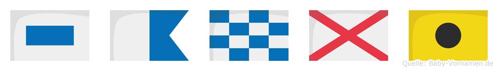 Sanvi im Flaggenalphabet
