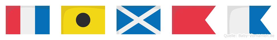 Timba im Flaggenalphabet