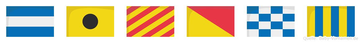 Jiyong im Flaggenalphabet