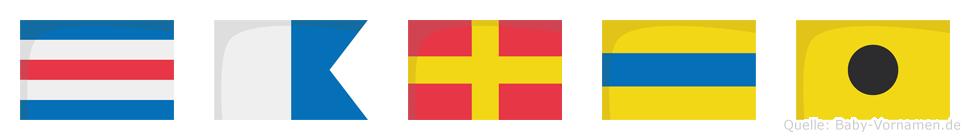Cardi im Flaggenalphabet