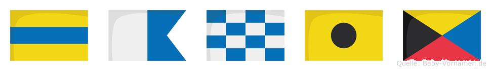Daniz im Flaggenalphabet