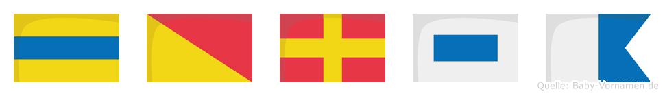 Dorsa im Flaggenalphabet