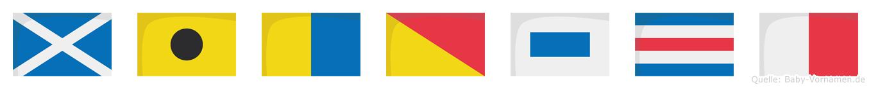 Mikosch im Flaggenalphabet