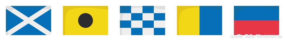 Minke im Flaggenalphabet