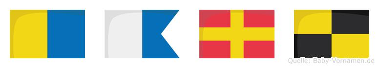Karl im Flaggenalphabet