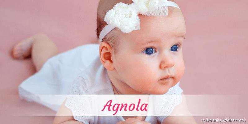 Name Agnola als Bild