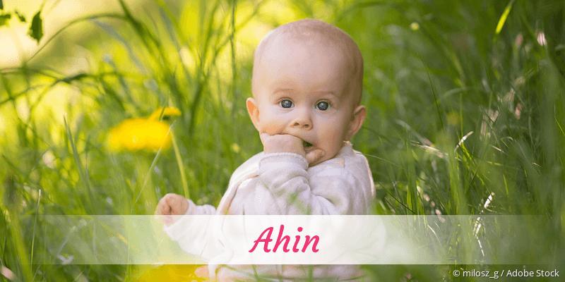Name Ahin als Bild