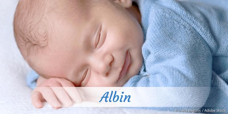Name Albin als Bild