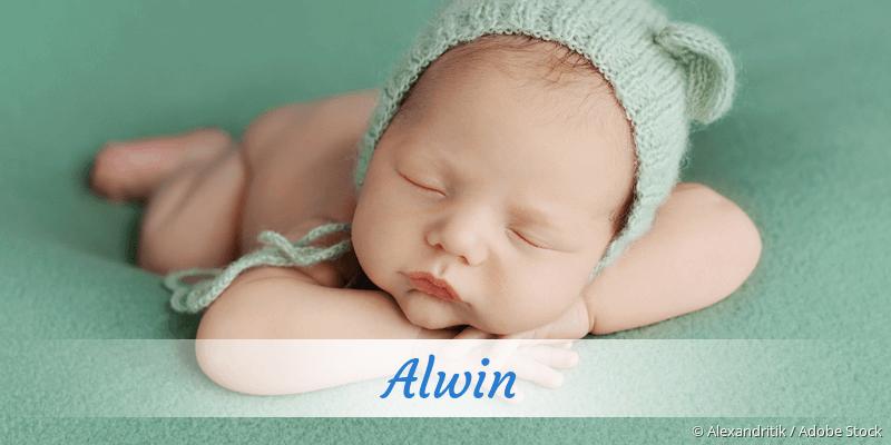 Name Alwin als Bild