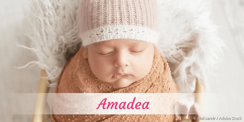 Name Amadea als Bild