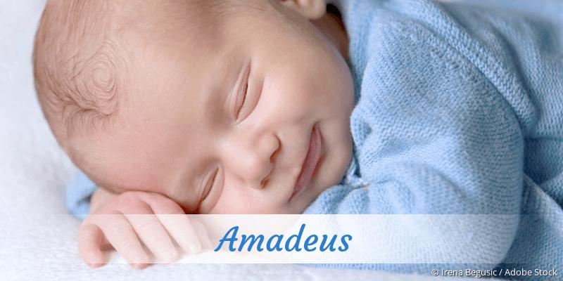 Name Amadeus als Bild
