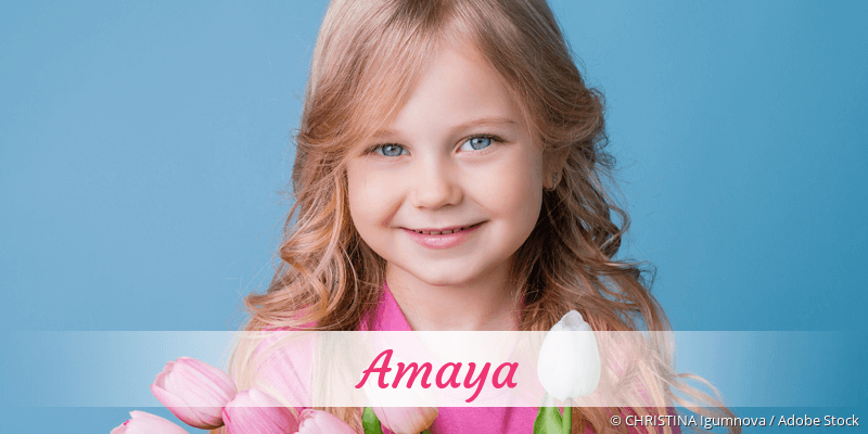 Name Amaya als Bild