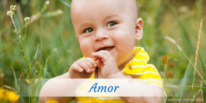 Name Amor als Bild