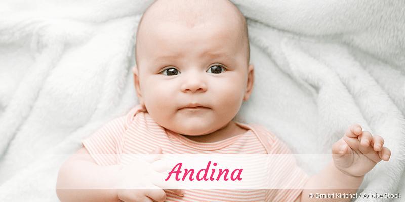 Name Andina als Bild
