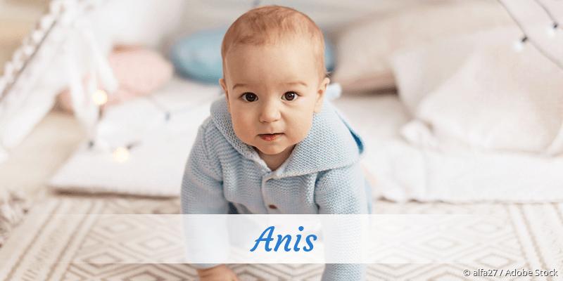 Name Anis als Bild
