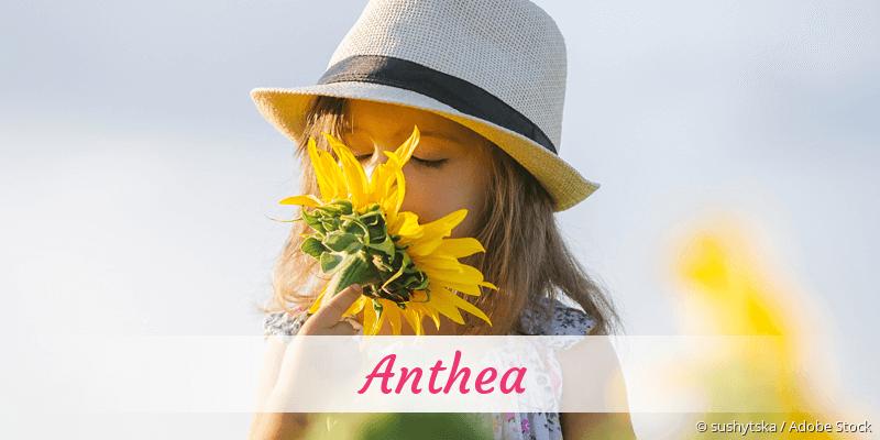 Name Anthea als Bild