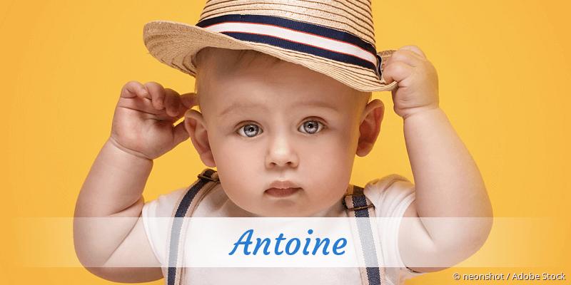 Name Antoine als Bild