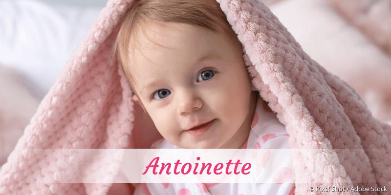 Name Antoinette als Bild
