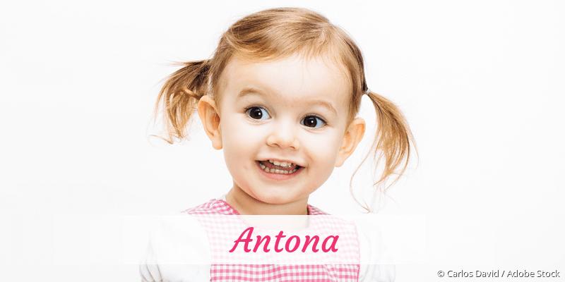 Name Antona als Bild