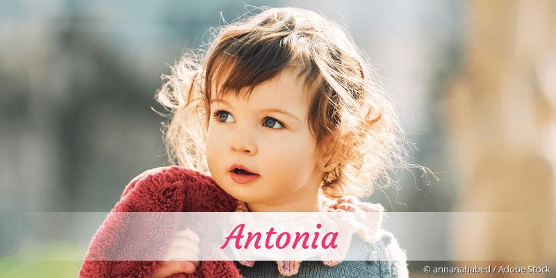 Name Antonia als Bild