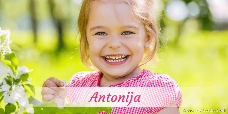 Name Antonija als Bild