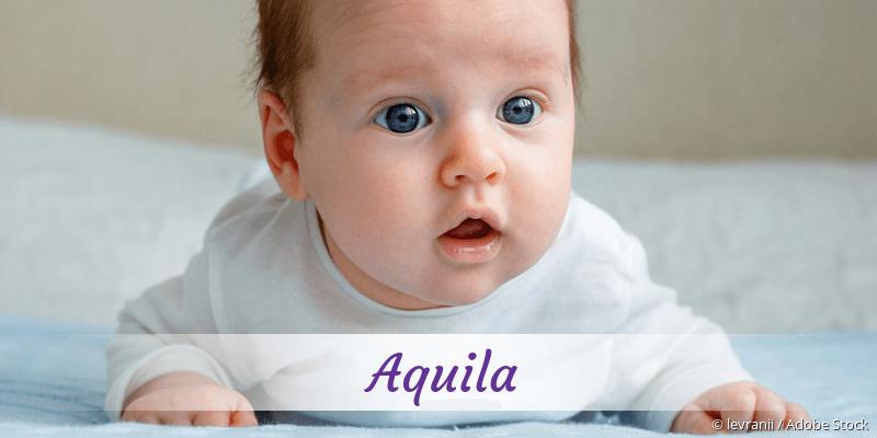 Name Aquila als Bild